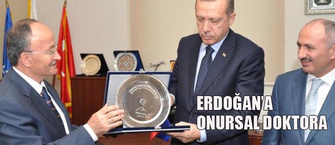 IUS'tan Cumhurbaşkanı  Erdoğan'a onursal doktora