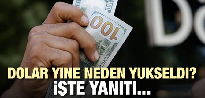 Dolar neden yükseldi? İşte yanıtı...