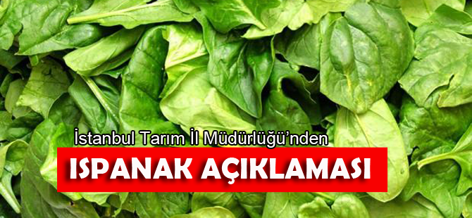 İstanbul İl Tarım Müdürlüğü'nden 'ıspanak' açıklaması