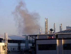 Pendik'te kuruyemiş fabrikasında yangın!