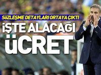 Ersun Yanal'ın Fenerbahçe'denr alacağı ücret!