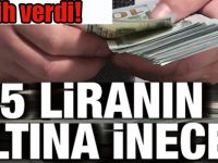 Dolar için tarih verdi: 5 liranın altına inecek