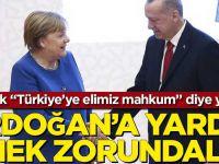 """""""Erdoğan'a elimiz mahkum"""" diye yazdılar! """""""