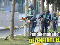 Mahalle mahalle tüm Pendik dezenfekte ediliyor