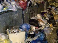 İstanbul'da skandal görüntüler.. Her yer çöp dağı
