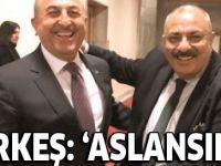 Bakan Çavuşoğlu'ndan Tuğrul Türkeş'i sevindiren gelişme: Aslansınız!
