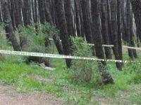 Pendik'te Ormanlık Alanda 10 Kilo A-4 Patlayıcı Bulundu