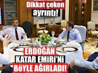Cumhurbaşkanı Erdoğan-Al Sani görüşmesi