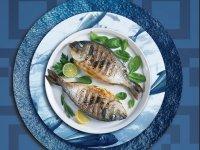 QR Kod ile Tabağınızdaki Balığı Ağdan Çatala İzlemek Mümkün!