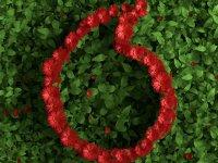 Vodafone'dan Müşterilerine Çevresel Sürdürülebilirlikte İş Birliği Çağrısı