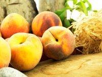 Yaş Meyve Sebze İhracatı Rekora imza Attı