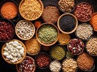 Hububat Bakliyat Yağlı Tohumlar Sektörü İhracatta 8 Milyar Doları Aştı